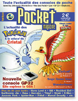 pocket_10_large.jpg