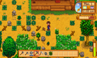 stardewvalley11.png