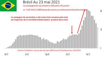 CovRise_2021_05_Brazil.jpg